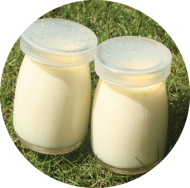 Milk Pudding 1kg